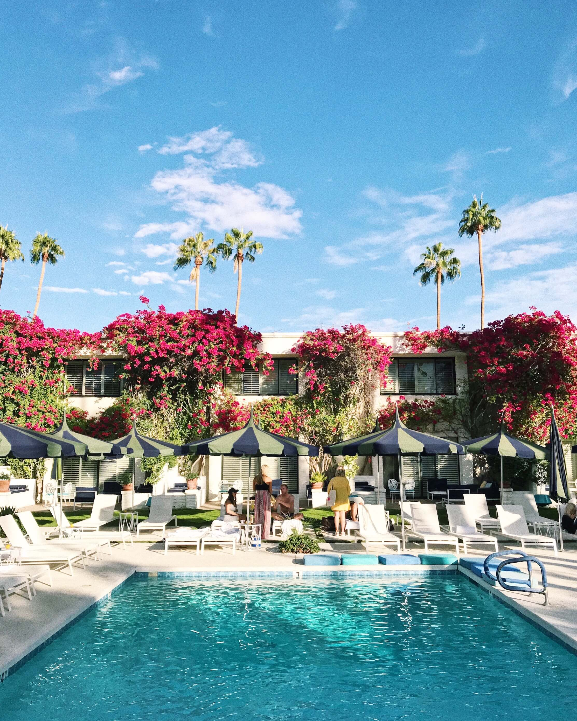 Parker Palm Springs Luxury Hotel California Pool
